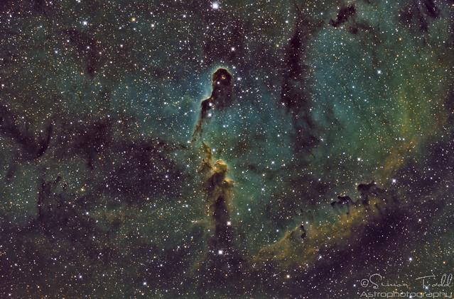 IC1396 - Elephant's Trunk Nebula in SHO