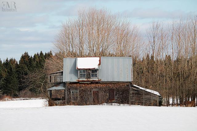 Maison abandonnée, La Voisine - Beauté Figée fb & ig