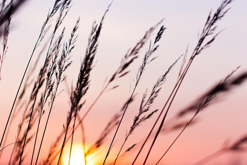 talvinen auringonlasku-3176