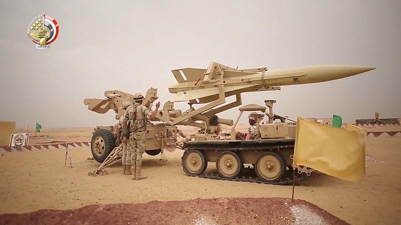 Hawk-egypt-c2018-mgtw-1