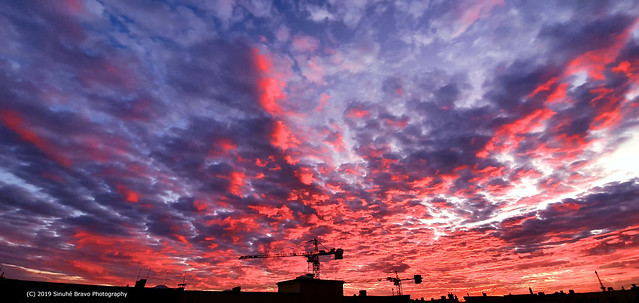 364/365 - The sunset 2019