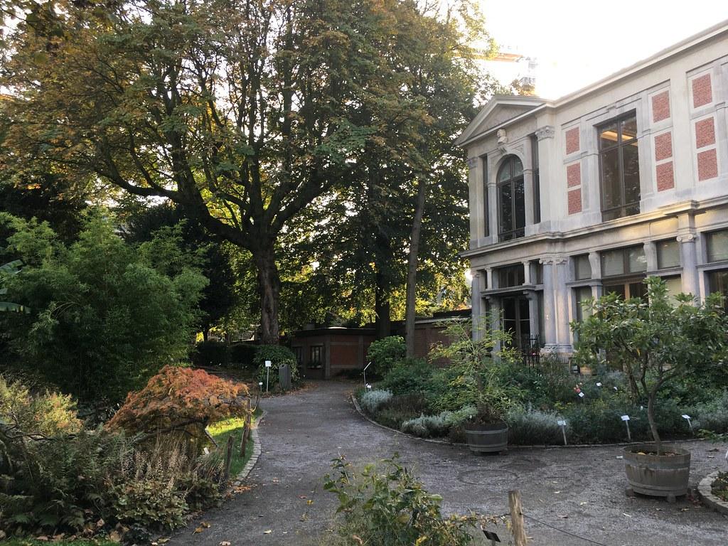 Jardín Botánico Amberes