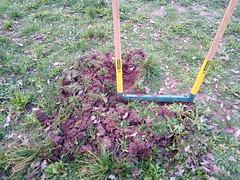 Greliner - préparer un trou de plantation