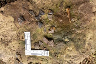 Chert shards, Campbell Cave, Christian County, Kentucky