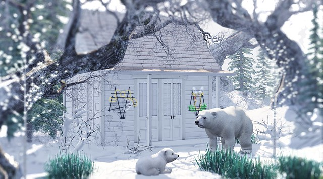 Polar bear lane