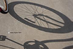 Shadow K75_0539IN
