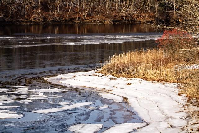 Salmon Falls Freeze