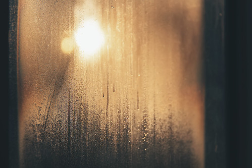 Steamy Window