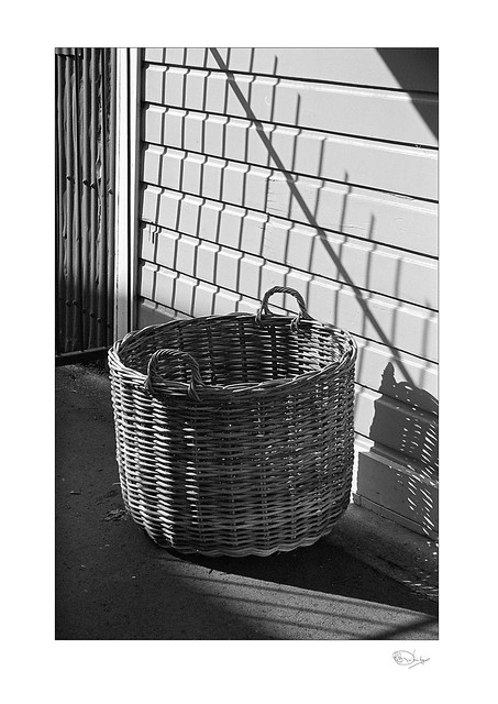 The Wood Basket in Summer