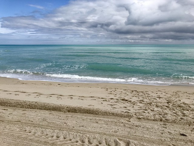 Miami Beach Christmas 2019 9