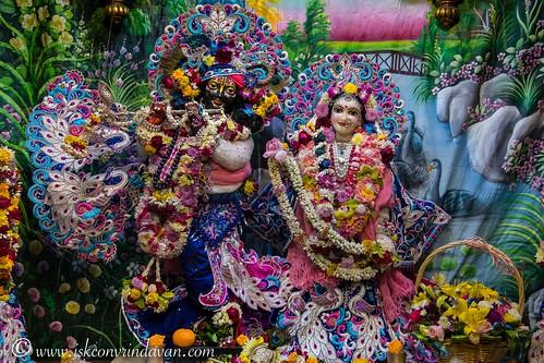 ISKCON Vrindavan Deity Darshan 31 Dec 2019