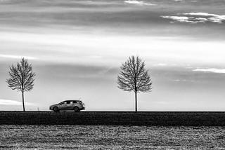 driving on the horizon bnw