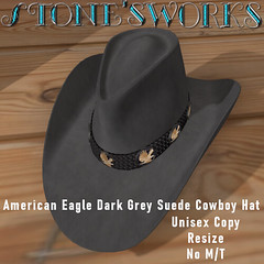 Amer Eagle DrkGrey CB Hat Stone's Works