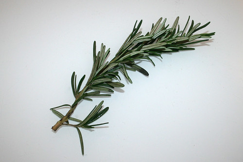 14 - Zutat Rosmarin / Ingredient rosemary