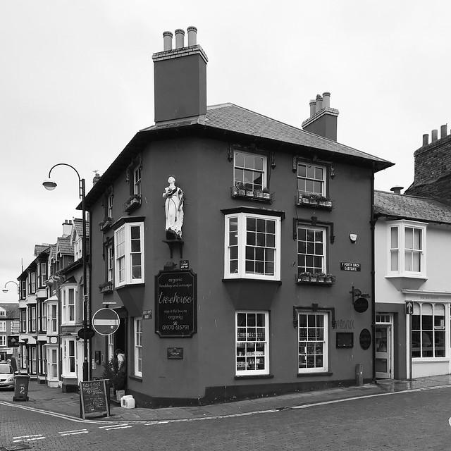 Victoria Tavern > Treehouse, Aberystwyth