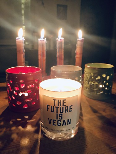 the future is vegan - happy new 2020, happy new decade! december 2019