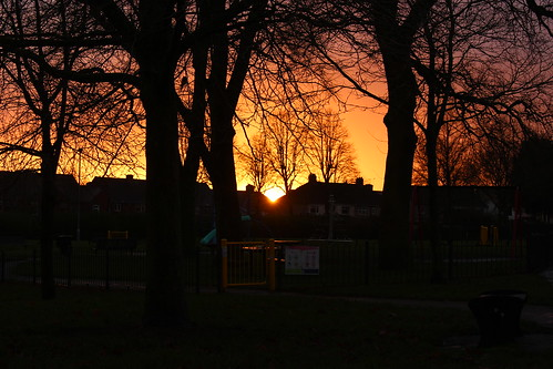 sunrise nuneaton park tree house sky