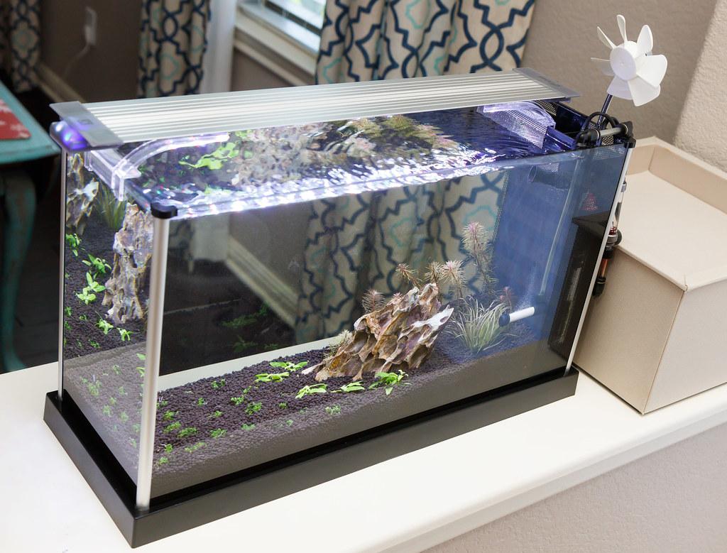 2019 Fluval Spec V Aquarium Journal Spec Tanks