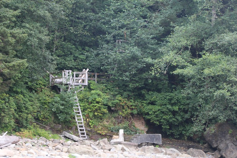 This is the ladder and stairway that lead up to the Carmanah Point Lighthouse from the north