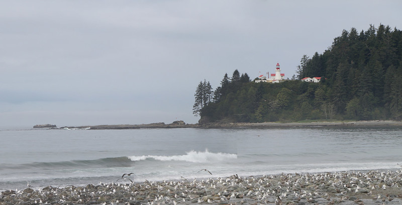 Zoomed-in view of Carmanah Point and the lighthouse from Carmanah Creek
