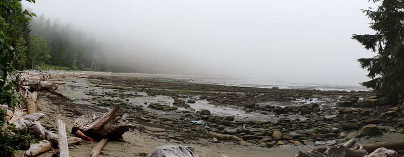 Misty morning on the beach at low tide near Carmanah Point