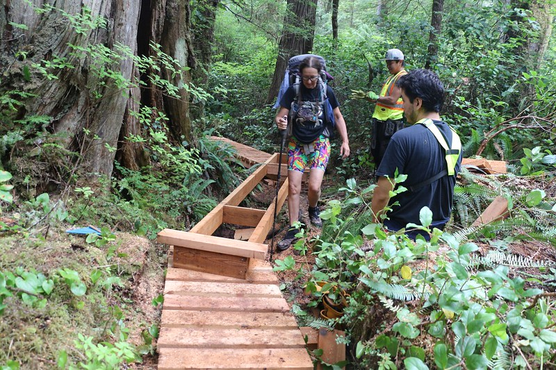 We met with a First Nations Trail Crew building new wooden walkways just west of Walbran Creek