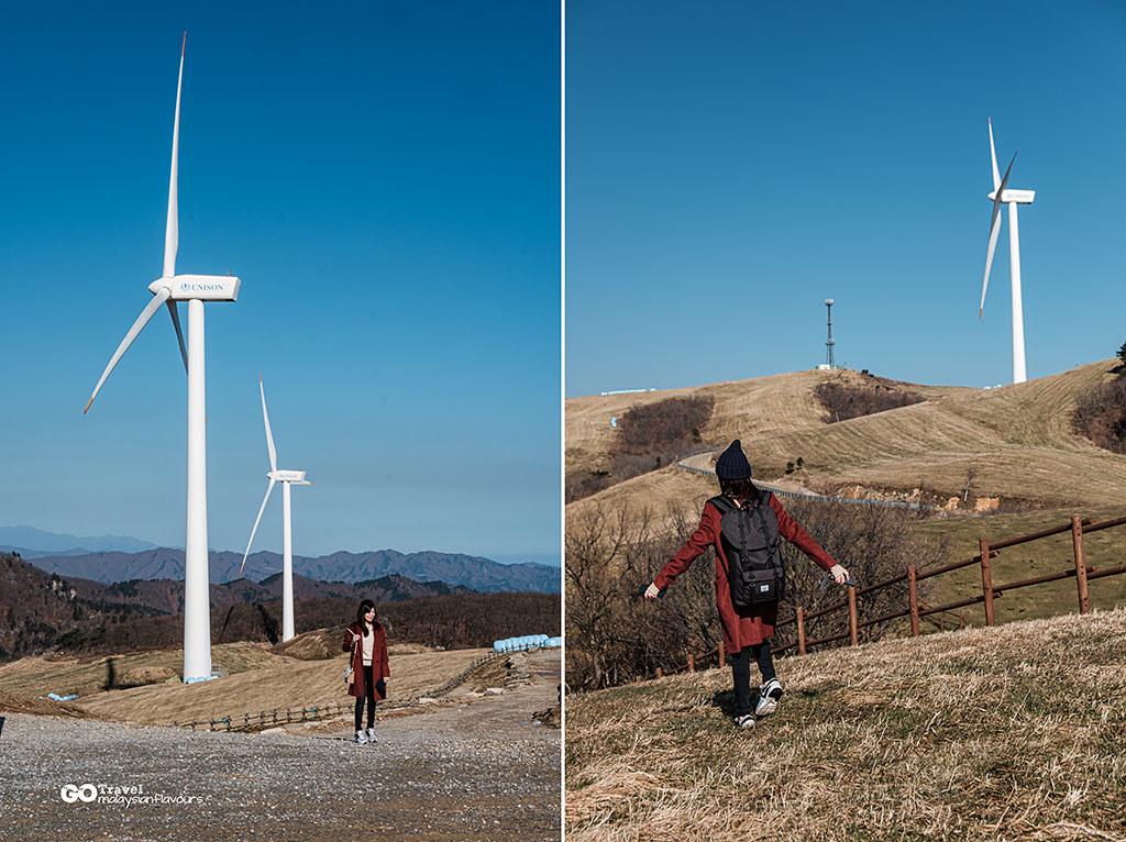 Daegwallyeong-Samyang-Ranch-1