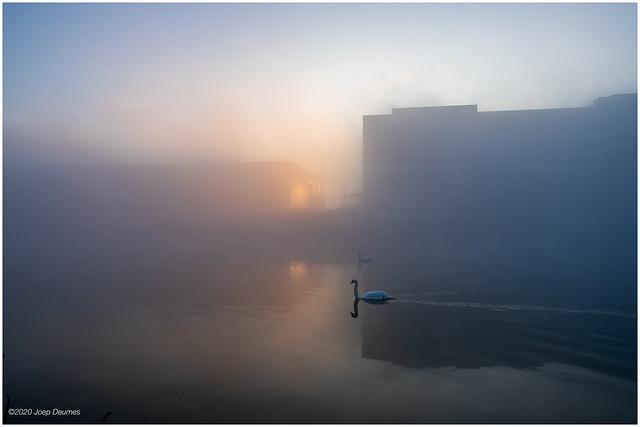mist Schippershaven-2020januari01-1316