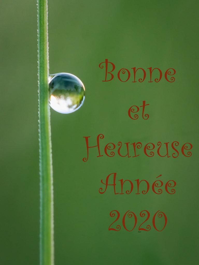"""2020, l'année de l""""Équilibre... 49309438517_1b9ab009e0_b"""