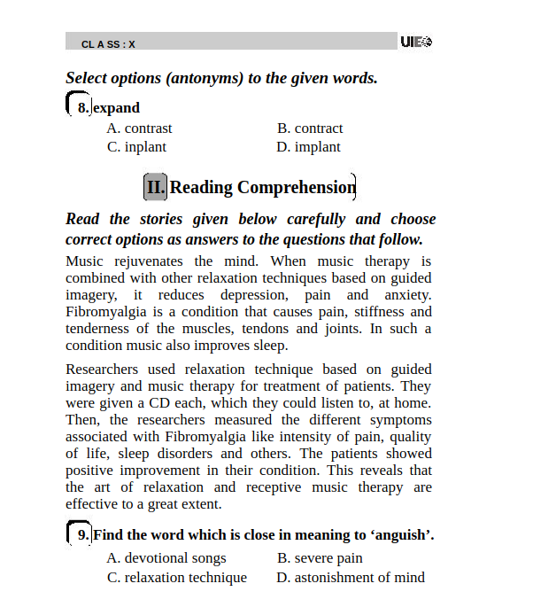 UIEO Sample Paper for Class 10