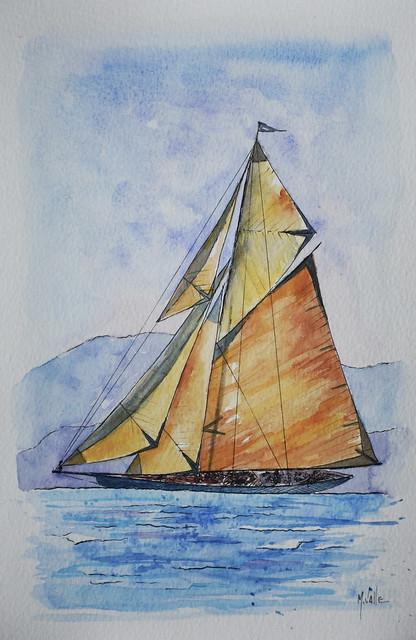 Sail 7