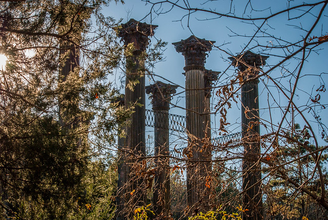 Columns from the Ruins of Windsor Mansion