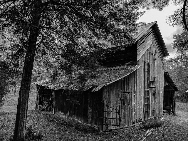 Monochrome Barn