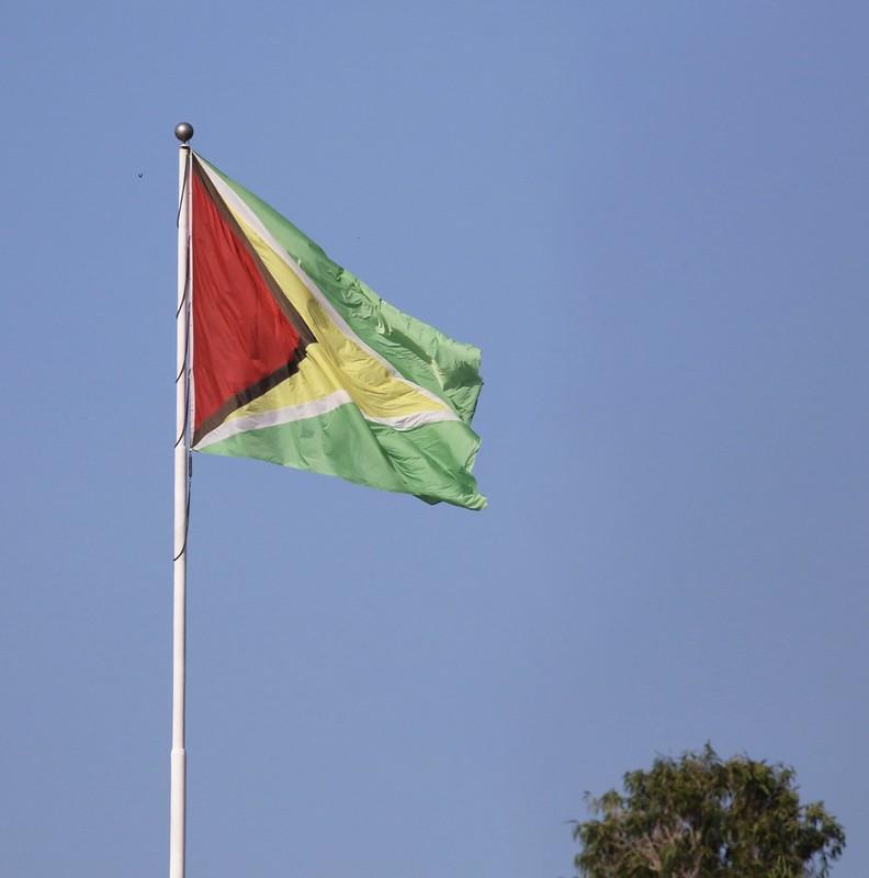 Guyana flag_Ascanio_Guyana_199A4040