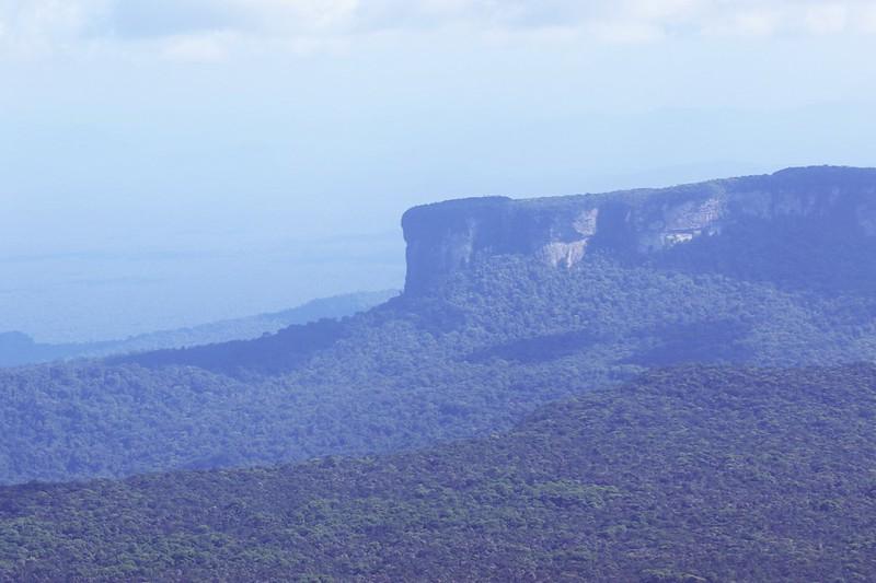 Tepui formation_Guyana_Ascanio_199A4890