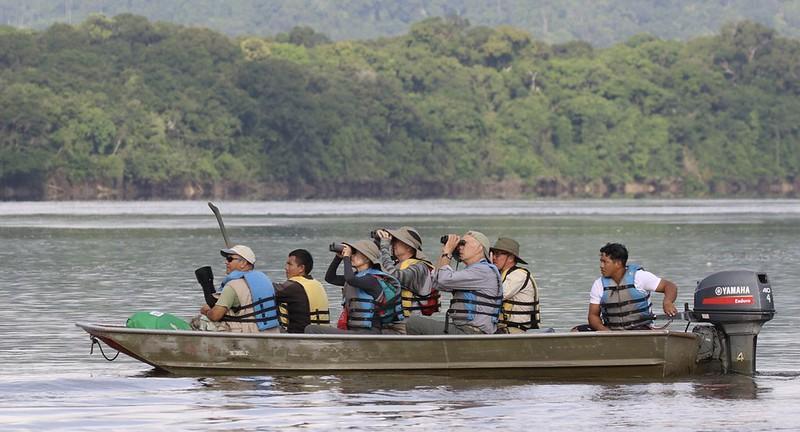 Birding Essequivo River_Guyana_Ascanio_199A4982