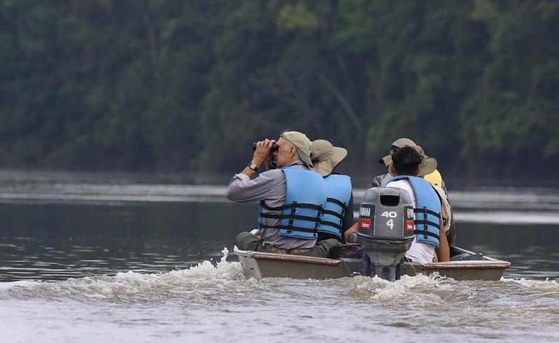 Birding Essequivo River_Guyana_Ascanio_ 199A4955