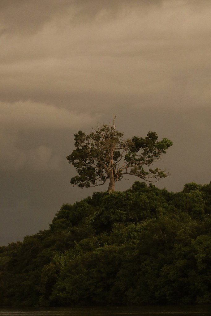 Storm approaching_Guyana_Ascanio_199A4908
