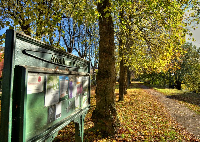 Avenham Walk notice board