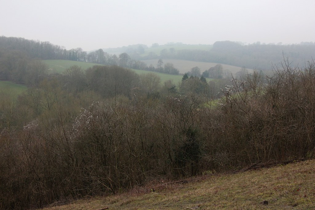 Woldingham to Oxted 1 Jan 2020 SWC1