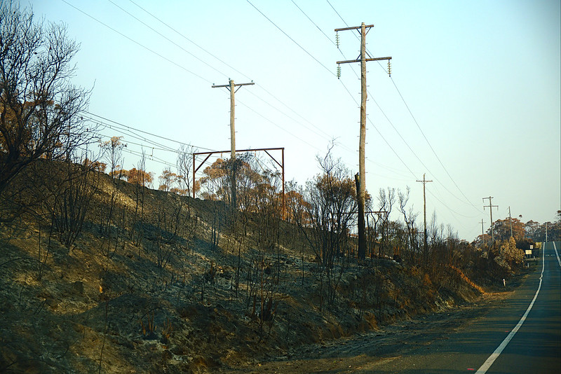 Burned rail embankment