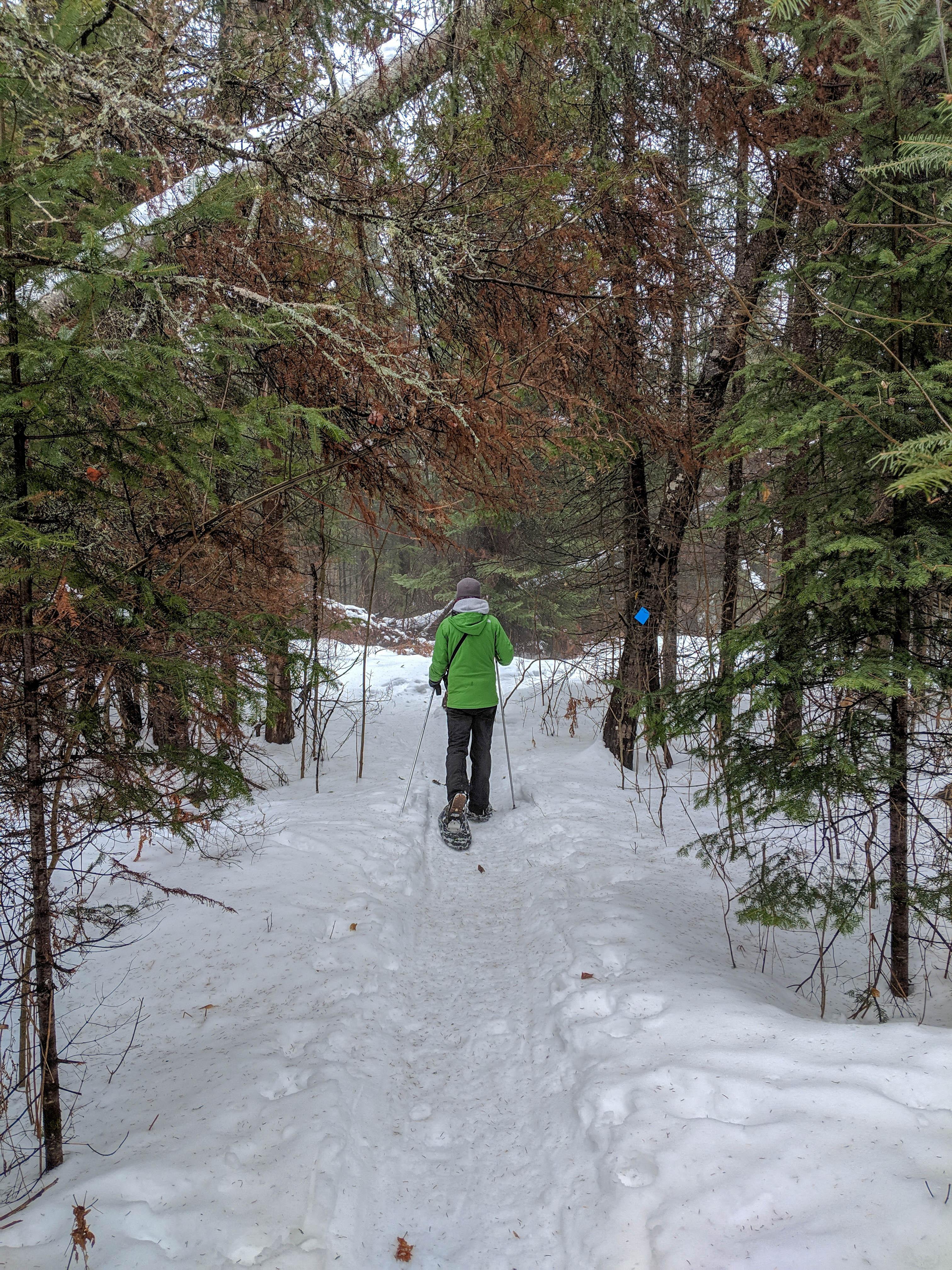 Kawartha Nordic snowshoeing