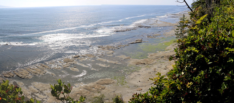We came upon a beautiful view of the coastline after hiking for miles in the forest, as we neared Camper Bay