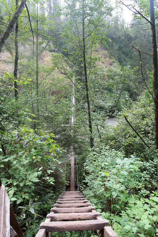 Heading down the steep ladders to the Suspension Bridge over Logan Creek