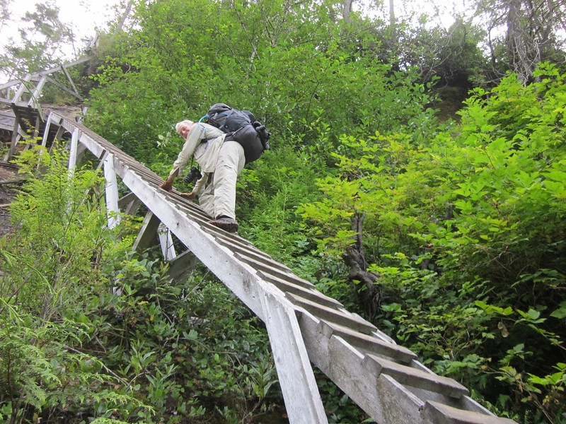 This ladder at Logan Creek was one of the scariest on the entire West Coast Trail - both by angle and exposure