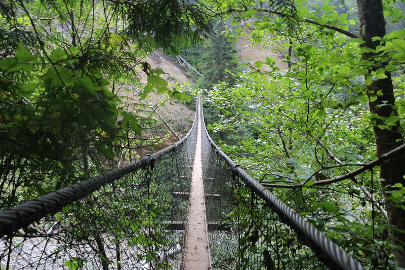 Hiking on the Suspension Bridge high above Logan Creek