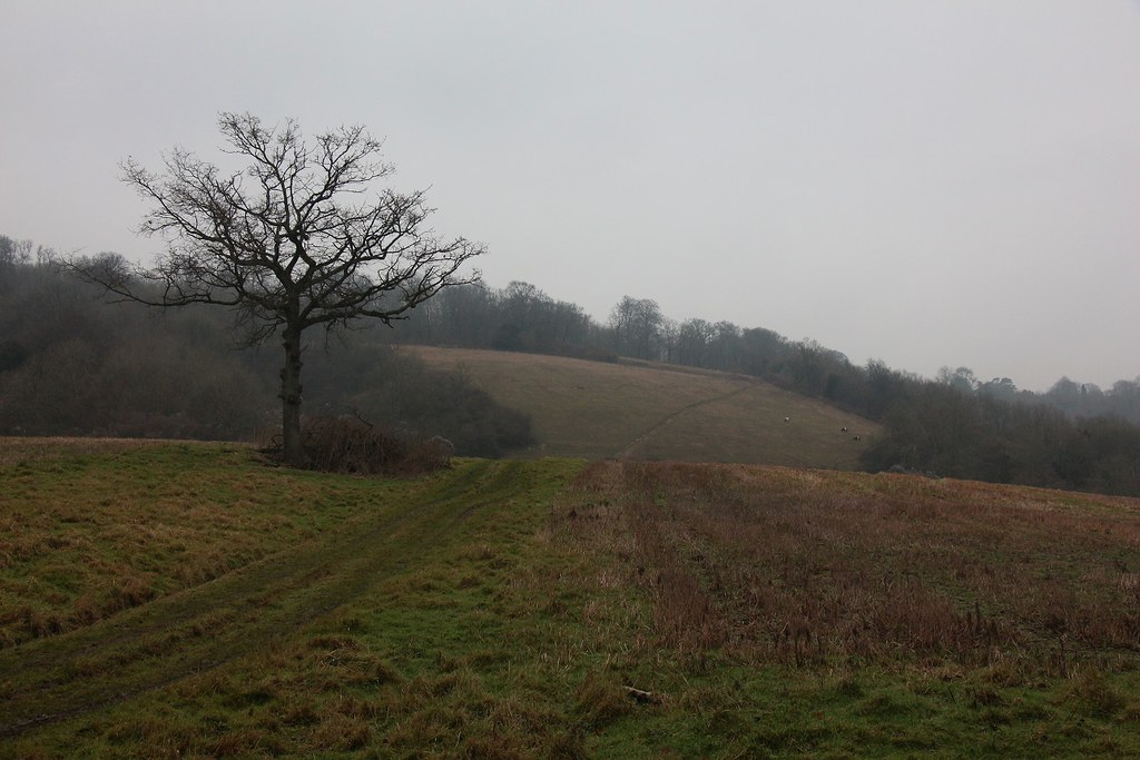 Woldingham to Oxted 1 Jan 2020 SWC5