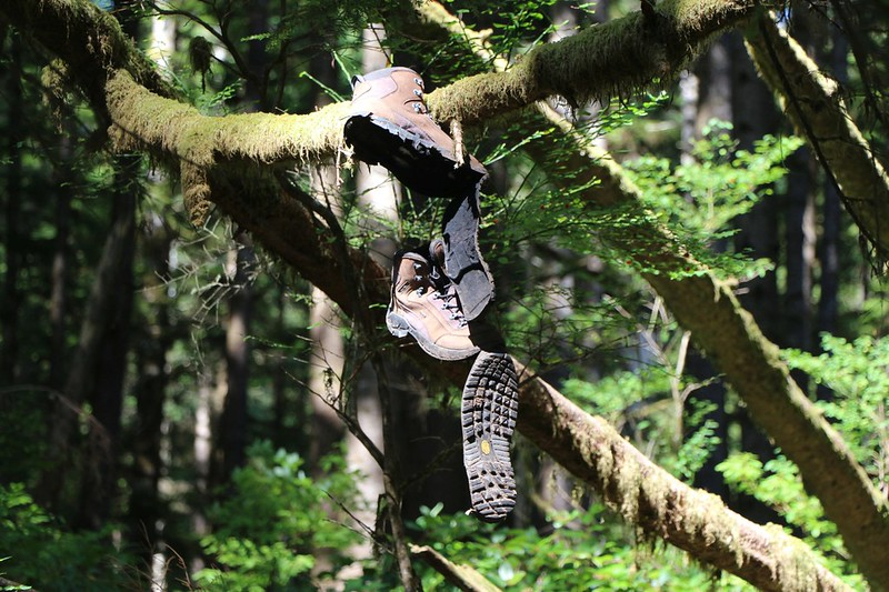 We noticed a pair of cheap boots (whose soles came loose) hanging from a branch