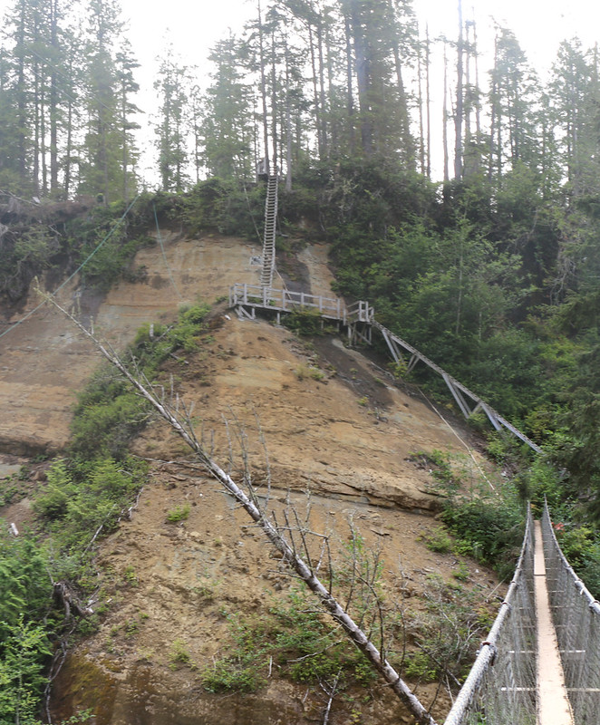 The set of ladders on the south side of the suspension bridge over Logan Creek