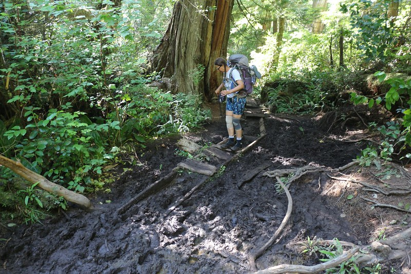 The old wooden walkway rotted and sank into the gloppy mud as we hiked on the West Coast Trail